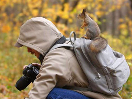 Perfectly timed squirrel 1